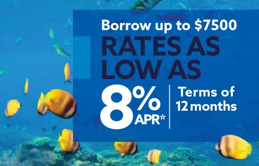 Colorful fish swimming in the ocean behind the words: Borrow up to $7500 with Rates as low as 8% APR*