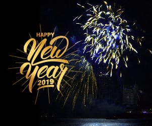 Fireworks against the night sky and the words to the left: Happy New Year 2019.